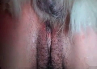 Lil pussy nicely banged by small dog